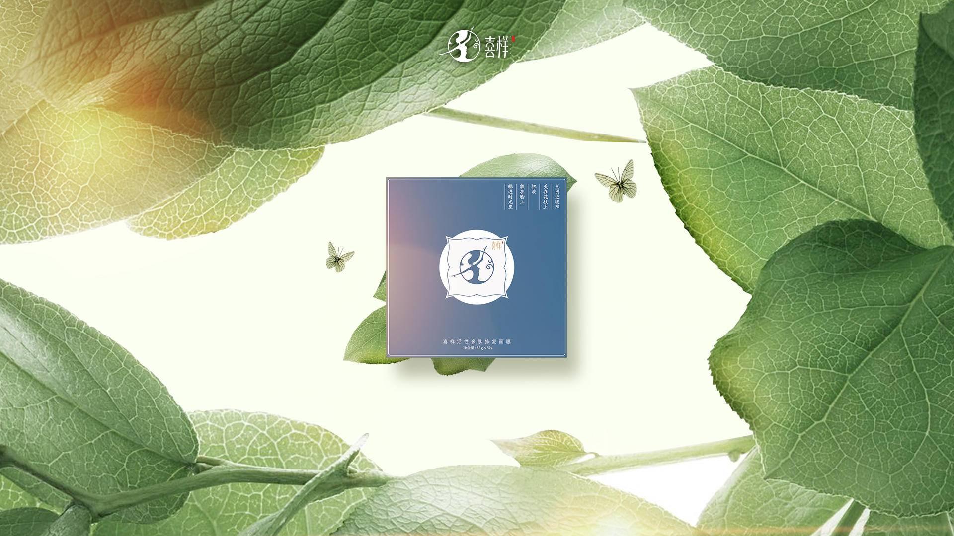 方案二-蓝.jpg